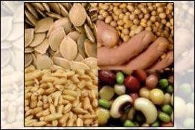 فائو: بهای مواد غذایی برای دومین ماه متوالی افزایش یافت