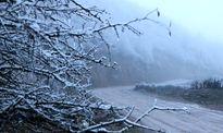 زمستان پربارشی در راه است؟