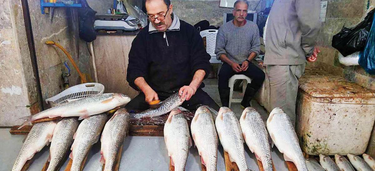 یک وعده غذایی با ماهی چند؟