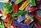 پر استفادهترین زبانهای دنیا کدامند؟