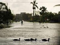 مردم فلوریدا پس از