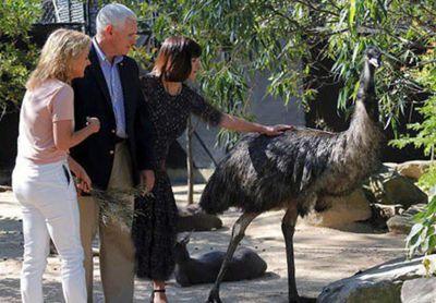باغوحشگردی معاون ترامپ در استرالیا +تصاویر