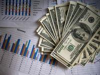 منابع ارزی کشور به چه کسانی تعلق گرفت؟