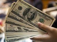 هشدار سازمان مالیاتی به خریداران ارز