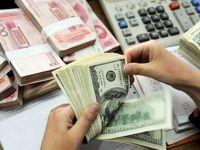 دیدگاه رییس سازمان حمایت درباره نرخ ارز