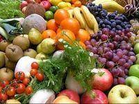 روسیه همه محدودیتهای کشاورزی ضدترکیه را لغو نمیکند