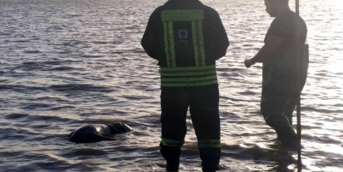 کشف یک جسد در حاشیه رودخانه کارون
