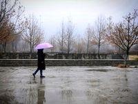 بارش باران تا آخر هفته در کشور