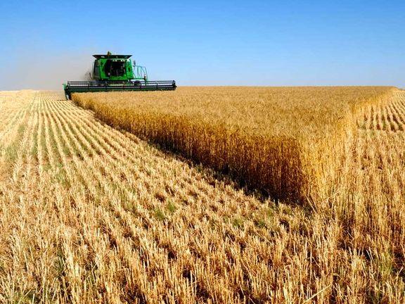 برداشت سالانه 1.5 تن محصولات کشاورزی و باغی در خراسان شمالی