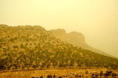 باد شدید و گرد و غبار فردا در تهران