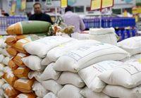 برنج ایرانی ۴۸درصد گران شد