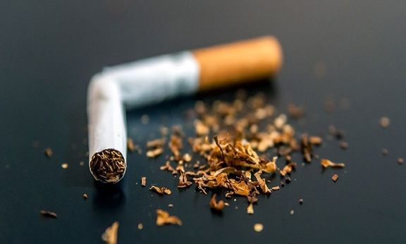 ته سیگار، قاتل گیاهان