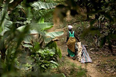 غنا به روایت تصویر