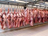 گوشت قرمز 10هزار تومان ارزان شد