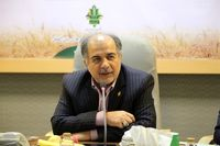 مدیرعامل بانک کشاورزی: با حمایت از زنجیره تولید زعفران، در بازار جهانی برند سازی کنیم