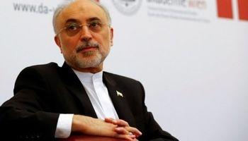 توقف جزئی تعهدات ایران با اجرای موثر و کامل برجام قابل برگشت است