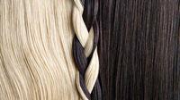 موی انسان میتواند وزن ۲فیل را تحمل کند