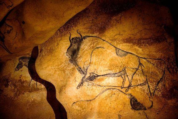 نقاشیهای ٣٦٠٠٠ساله غار چاوت فرانسه! +تصاویر