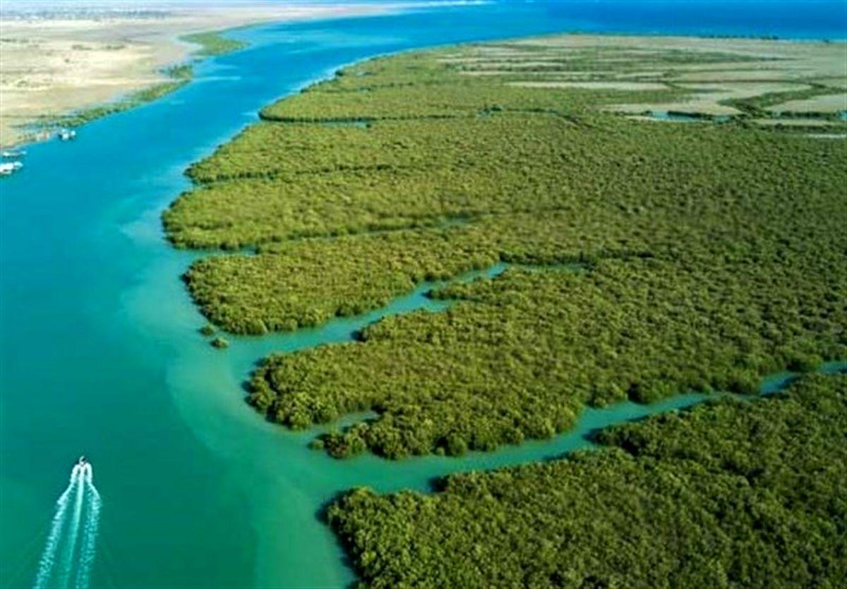 جلوگیری از ورود آب شیرین به دریا از عوامل اصلی ایجاد فاجعه زیست محیطی است