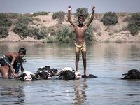 کارون؛ تنها سرگرمی کودکان گاومیشآباد