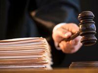 حکم پرونده دختر وزیر سابق صادر شد