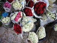 ۴۰ درصد؛ افزایش قیمت گل در آستانه روز مادر