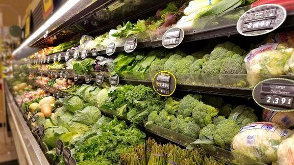 کدام مواد غذایی برای تقویت قدرت ذهنی مناسبترند؟