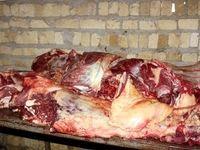 افشای مافیای گوشت