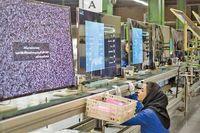 بازار تلویزیون در انتظار رشد عرضه برندهای داخلی