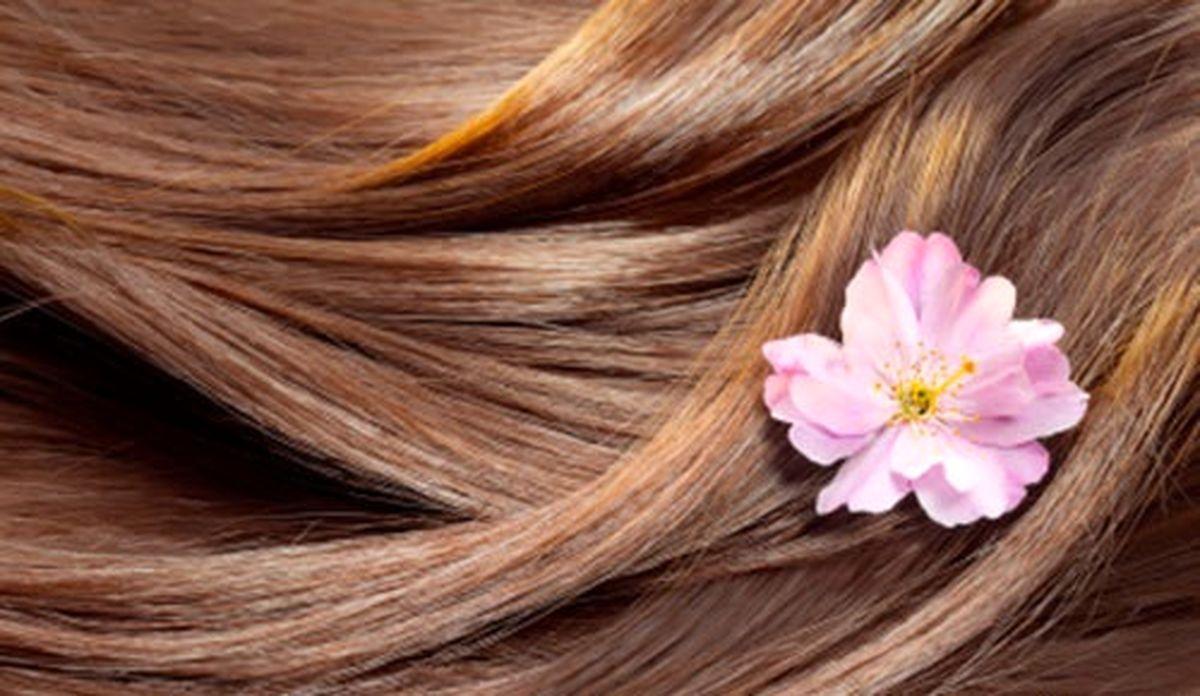 روشهای مراقبت و نگهداری از مو