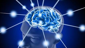 تولید داروی جدید برای آلزایمز
