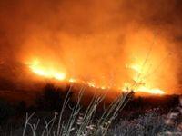 مهار آتشسوزی در منطقه ظفرآباد فارس +تصاویر