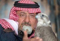 ولیعهد معزول عربستان در شکارگاه +عکس