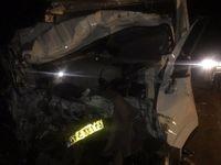 تصادف تریلی و کامیونت 2کشته برجای گذاشت