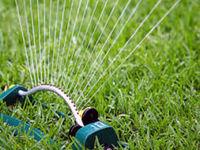 گسترش آبیاری نوین، تدبیری برای غلبه بر بحران آب