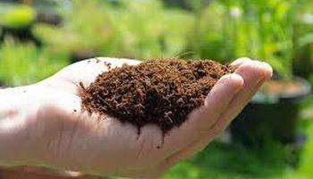 اولویت تامین کود اوره کشاورزی در پتروشیمیها