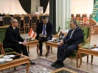 سفیر اتریش: مشهد نقش مهمی در گسترش همکاری دو جانبه دارد