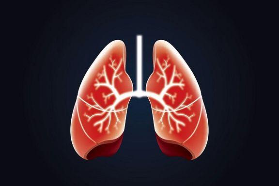 ۶راهکار ساده برای تقویت ریهها و دستگاه تنفسی