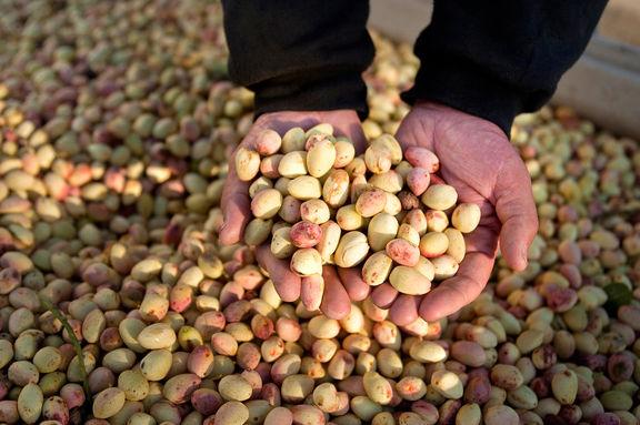خسارت 3900میلیارد تومانی کرونا به کشاورزان و صادرکنندگان
