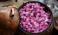 گل و گلاب در فراق گردشگر و خریدار