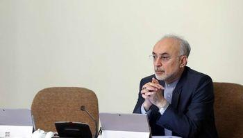 صالحی: با قدرت به حرکت برای پیشبرد اهداف هستهای ادامه میدهیم