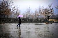 یک هفته بارش باران در 21 استان