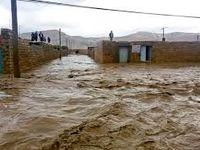 برآورد قطعی خسارات سیل تا 2 هفته دیگر