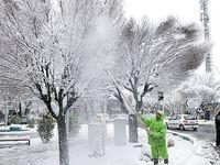بارش برف و باران در کشور تا  ۳۰بهمن