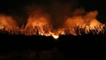 آتش سوزی در بخشی از اراضی حاشیه تالاب انزلی