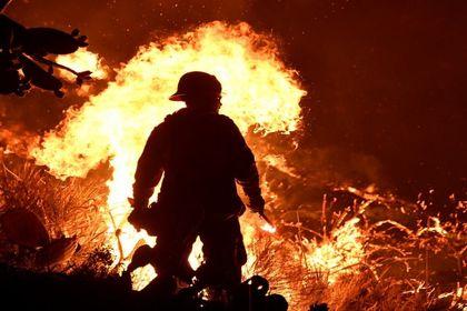 آتشسوزی گسترده در مناطق جنگلی جنوب کالیفرنیا +عکس