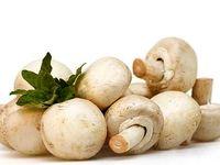 خوردن قارچ برای چه کسانی ممنوع است؟