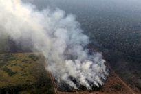 برزیل کمک گروه7 برای مقابله با آتش سوزی جنگلهای آمازون را نپذیرفت
