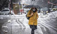 سفیدپوش شدن شهرهای گیلان از برف +عکس