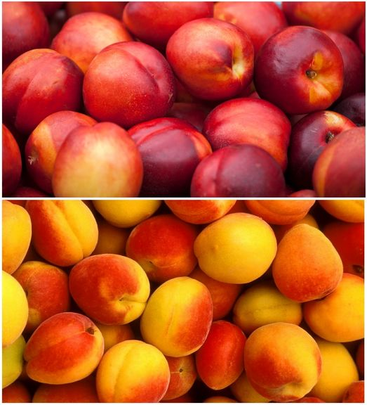 میوههای نوبرانه بازار چند؟